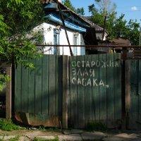 Кошмар на улице Дарвина, или Я русский бы выучил,только вот... :: Дмитрий Тилинин