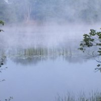 Утро на реке :: Александр Архипов