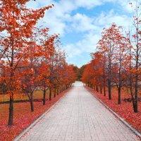 Кумачевая осень :: Юля Юля