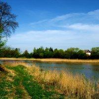 Пейзаж. :: Антонина Гугаева