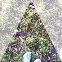 Green grass :: Полина Мамиева