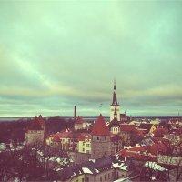 Таллинн :: Евгения Максимова