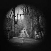 Мост у дачи Башкирцева :: Roman Rez