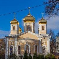 Н.Новгород. Храм святителей Московских. :: Максим Баранцев