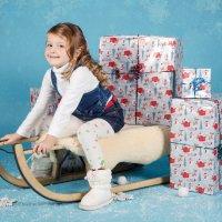 рождественская фотосессия :: Natalia07 Fuchs