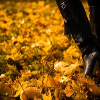 Осенней походкой... :: Игорь @