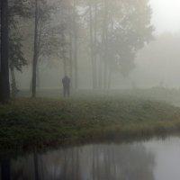 один в тумане :: Святослав Лебедев