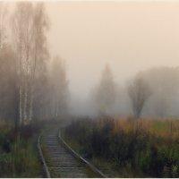 Осень туманная :: Николай Белавин