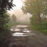 после дождя :: юрий иванов