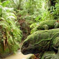 Джунгли Индонезии :: kirm2 .