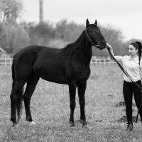 Моя лошадка...! :: Vadim77755 Коркин