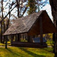 парк :: Татьяна Басараб