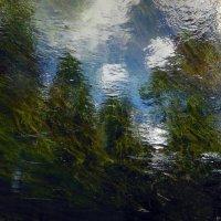 отражения :: Сергей Атлашкин