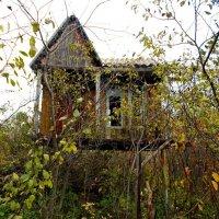 Дом на ножках :: Оксана Баллыева