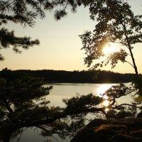 Швеция :: Ольга Катько
