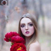 Кукла :: Дарья Гампер