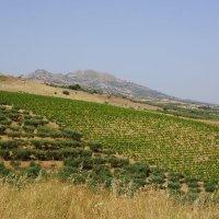 Сельская Сицилия. :: Vladimir