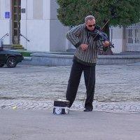 Віват маестро! :: Юрій Федчак