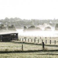 Как в тумане... :: АндрЭо ПапандрЭо