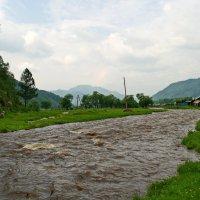Река Сема в Шебалино,Горный Алтай. :: Владимир Михайлович Дадочкин