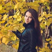 В осеннем лесу :: Илья N