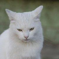 !! :: Ketrin Sutcliff