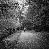 Осеннее одиночество :: Анжелика Литвинова