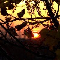 Закат.. :: ФотоЛюбка *