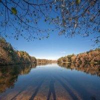 Осень в Кратово :: Артем Воробьев