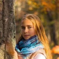Осенний лес где полным полно чудес :: Владимир Меньшиков