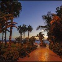 Tenerife, Costa Adeje :: Jossif Braschinsky