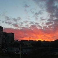 закат из моего окна :: Лиза Игошева
