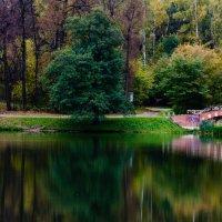 Осенняя пастель :: Анжелика Литвинова