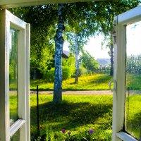 утро в деревне... :: Сергей Андрейчук