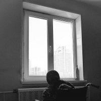 Окно :: михаил кибирев