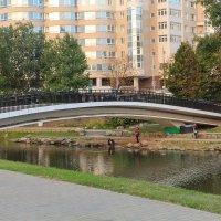 Горбатый мост. :: Nonna