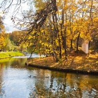 Осень неслышной поступью... :: Владимир Дар