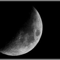 Луна :: Елена Баскакова