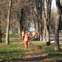 Отряд весёлых дворников хоронит листопад... :: Наталья Тимошенко