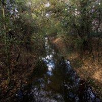Осень в городе :: Witalij Loewin