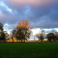 Утро в парке :: Witalij Loewin