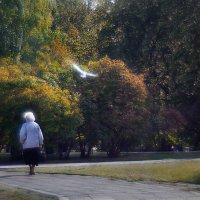 Осень :: Nn semonov_nn
