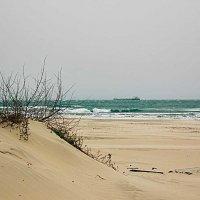 Море, шторм :: Ирина Рассветная