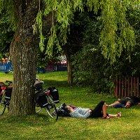 Велопробег :: Владимир Самсонов