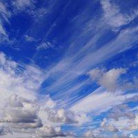 Красивое небо. :: Антонина Гугаева