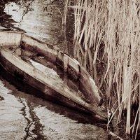 Старая лодка.. :: игорь козельцев