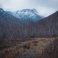 горы :: Алексей Варламов