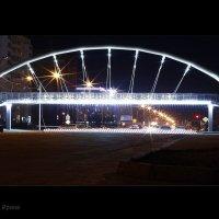 Мост :: Ирина Ванина