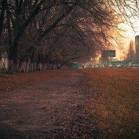 утро понедельника...... :: Слава Китовской18-55