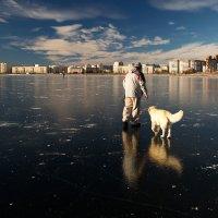 выход на лёд :: Александр Заас